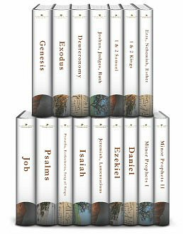 Understanding the Bible Commentary Series: Old Testament (16 vols.)