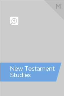 New Testament Studies Bundle, M (11 vols.)