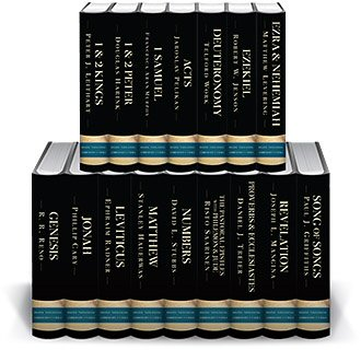 Brazos Theological Commentary on the Bible (16 vols.)