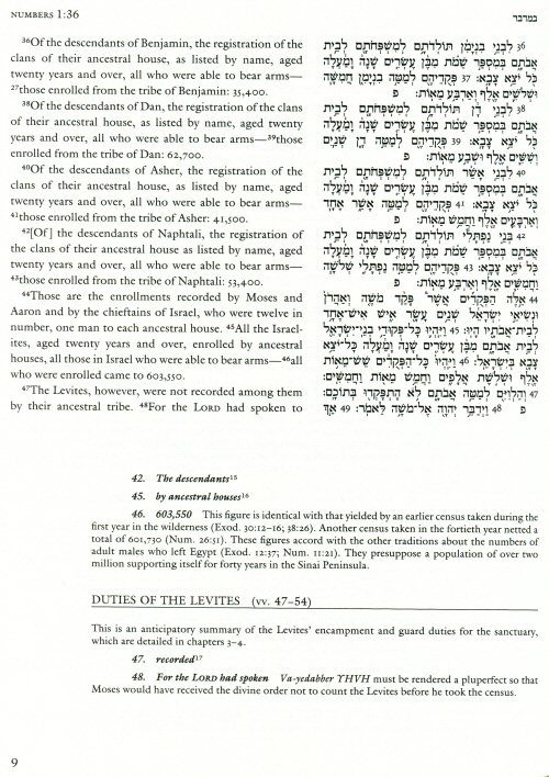 essay of jacob from the bible