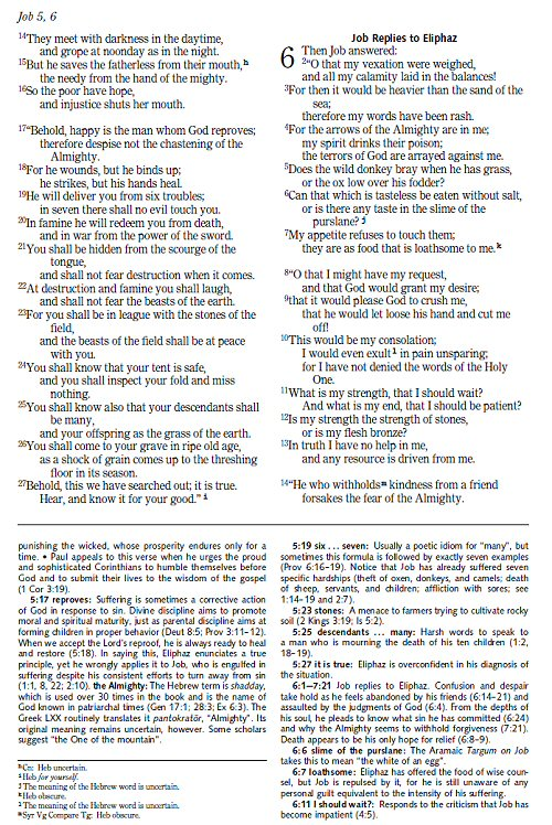 essays on job in the bible Essays - largest database of quality sample essays and research papers on ruth bible.