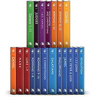 New Beacon Bible Commentary (NBBC) (19 vols.)