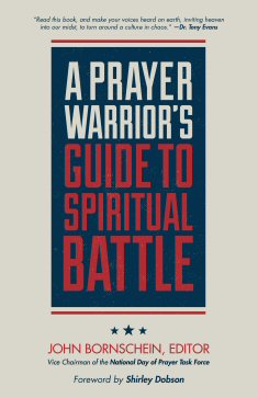 A Prayer Warrior's Guide to Spiritual Battle: The Front Line