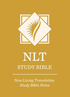 What is the New Living Translation (NLT)